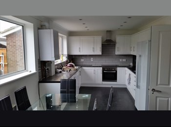 EasyRoommate UK - 3 new large double bedrooms - St Ives, Huntingdonshire - £460