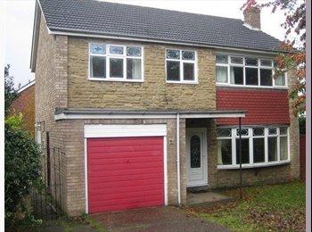 EasyRoommate UK - Large detached house next to woodland - Scunthorpe, Scunthorpe - £350