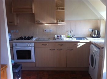 EasyRoommate UK - Lovely big and light double room in a modern flat - Buckingham, Buckingham - £500
