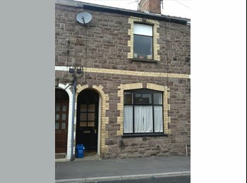 EasyRoommate UK - Room to rent 10 minutes walk from Abergavenny Town - Abergavenny, Abergavenny - £282