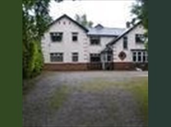 EasyRoommate UK - Double En-Suite rooms available - Whittle-le-Woods, Chorley - £400