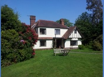 EasyRoommate UK - Double-room in large detached house with garden - Pembury, Tunbridge Wells - £480