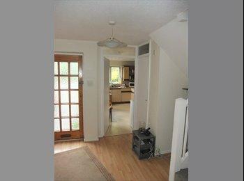 EasyRoommate UK - Large single room, Horsham - Horsham, Horsham - £375