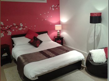EasyRoommate UK - Large Double Room to rent - North Chesterfield, Chesterfield - £360