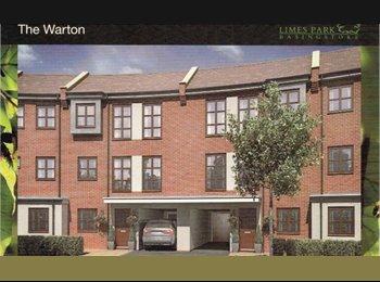 EasyRoommate UK - Brand New House  - Limes Park sought after - Chineham, Basingstoke and Deane - £400