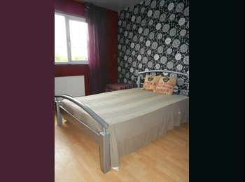 EasyRoommate UK - Great house in Oadby 1 single and 1 double room - Oadby, Leicester - £360