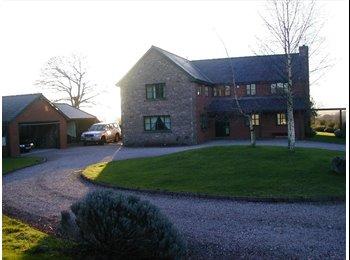 EasyRoommate UK - Huge modern double ensuite room in detached house - Ross-on-Wye, Ross-on-Wye - £350