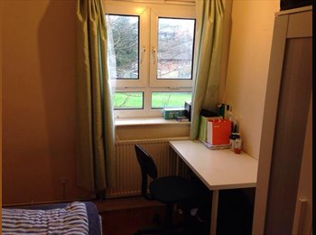 EasyRoommate UK - Single room in a 3 bedroom flat - Ladywood, Birmingham - £250