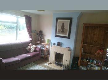 EasyRoommate UK - Large modern semi - Ideal for 4 students - Canterbury, Canterbury - £385