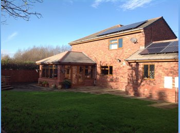 EasyRoommate UK - House mate wanted  Buckley (Flintshire) area - Sealand, Chester - £350