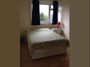 EasyRoommate UK - Large Double room - Horsham, Horsham - £500