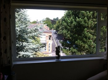 EasyRoommate UK - Double room for rent in superb location - Sutton Coldfield, Birmingham - £350