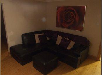 EasyRoommate UK - For rent - Double room in beautiful house - Belfast, Belfast - £250