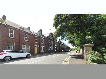 EasyRoommate UK - Historical Location in Spital Tongues, Newcastle - Spital Tongues, Newcastle upon Tyne - £238