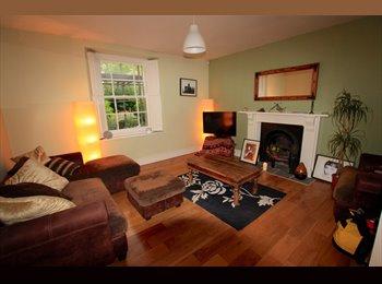 EasyRoommate UK - Beautiful garden flat in Redland - Redland, Bristol - £700