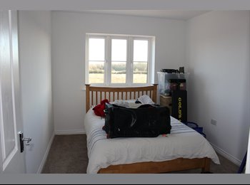 EasyRoommate UK - Double room in a clean tidy flat - Aylesbury, Aylesbury - £550