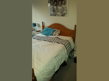 EasyRoommate UK - DOUBLE ROOM TO LET - Colchester, Colchester - £390