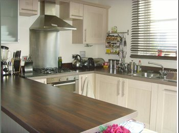 EasyRoommate UK - Double bedroom with bathroom in luxury townhouse - Aylestone, Leicester - £500