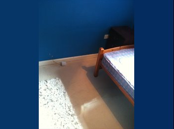 EasyRoommate UK - single room to let - Hampton, Peterborough - £303