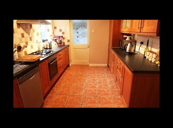 EasyRoommate UK - Room to rent out in Worcester - St John's, Worcester - £415