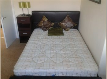EasyRoommate UK - Room outside Newton Abbot - Newton Abbot, Newton Abbot - £400