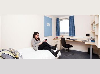 EasyRoommate UK - Ensuit Room in Kincardine Court - Longsight, Manchester - £559