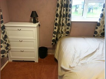 EasyRoommate UK - cozy double room with private shower - Alresford, Winchester - £475
