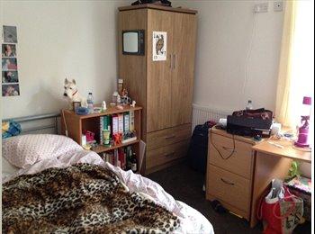 EasyRoommate UK - Lovely double room with ensuite - Selly Oak, Birmingham - £390
