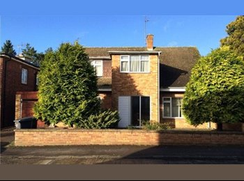 EasyRoommate UK - FANTASTIC DETACHED HOUSE CENTRAL CHELMSFORD - Moulsham, Chelmsford - £595