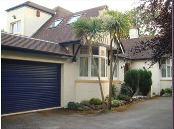 EasyRoommate UK - Lovely Large Double Room with Own private bathroom to rent in large family home. - Babbacombe, Torquay - £450