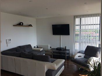 EasyRoommate UK - Luxury 2 Bedroom with HUGE Balcony - Manchester City Centre, Manchester - £550