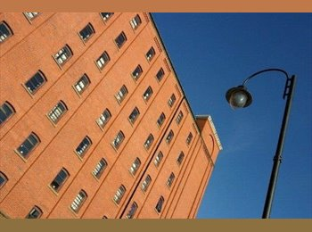 EasyRoommate UK - MANCHESTER STUDENT VILLAGE - Manchester City Centre, Manchester - £368