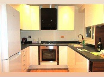EasyRoommate UK - Beautiful flat, Crouch Hill, Fantastic Location - Finsbury Park, London - £850