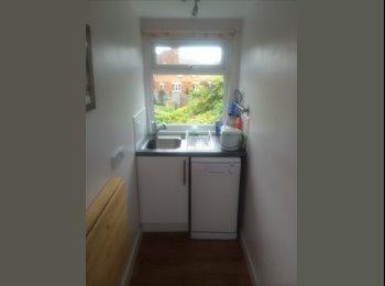EasyRoommate UK - Double bedroom studio flat - Taunton, South Somerset - £450