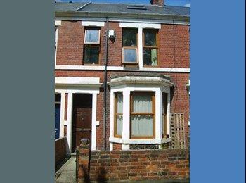 EasyRoommate UK - Double room in settled pro Heaton house share - Heaton, Newcastle upon Tyne - £300