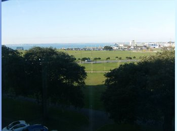 EasyRoommate UK - Seafront Flat - Southsea, Portsmouth - £433