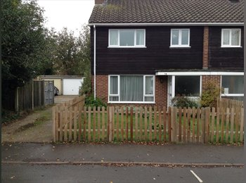 EasyRoommate UK - Room to Rent in Fun, Idilic House (rent negotiable - Hurley, Maidenhead - £475