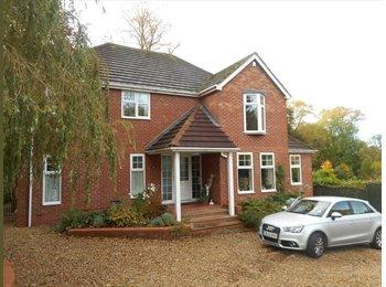 EasyRoommate UK - Modern house BUT big room! - Stoke-on-Trent, Stoke-on-Trent - £400