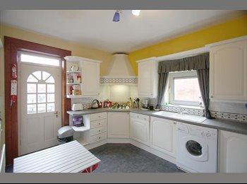 EasyRoommate UK - Female housemate needed! - Jesmond, Newcastle upon Tyne - £347