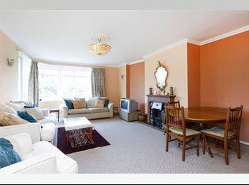 EasyRoommate UK - Amazing flat in Roehampton - Putney, London - £750