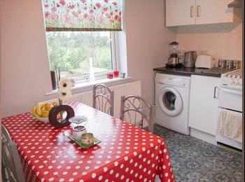 EasyRoommate UK - Large Double bedroom in Walthamstow **Clean £570** - Walthamstow, London - £570