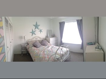 EasyRoommate UK - *Sunny Double Room* Newly Renovated!Available now! - Llanishen, Cardiff - £350