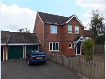 EasyRoommate UK - Detached House in Kingsnorth, Ashford - Ashford, Ashford - £450