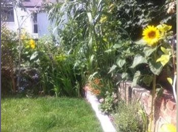 EasyRoommate UK - Lovely room in nice Hanover house - Brighton, Brighton and Hove - £450