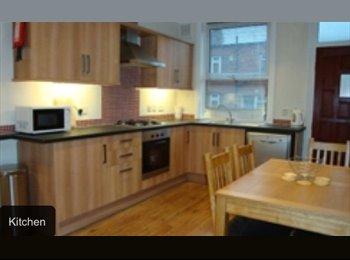 EasyRoommate UK - Double bedroom in modern fitted house - Headingley, Leeds - £85