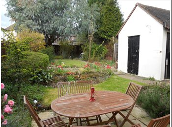 EasyRoommate UK - Room to rent in chelmford - Chelmsford, Chelmsford - £475