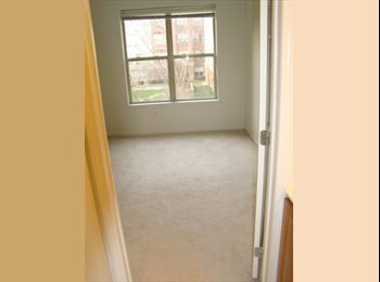 EasyRoommate US - Room Available at Plaza Square Apt; Luxury Complex - New Brunswick, Central Jersey - $800