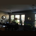 EasyRoommate US Professional Male looking to share my condo - Hyde Park, South side, Chicago - $ 900 per Month(s) - Image 1