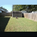 EasyRoommate US Rooms for rent. - Bayside, Virginia Beach - $ 600 per Month(s) - Image 1