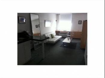 EasyRoommate US - 400ft² - Fantastic renovated and furnished studio - Miami Beach, Miami - $1200